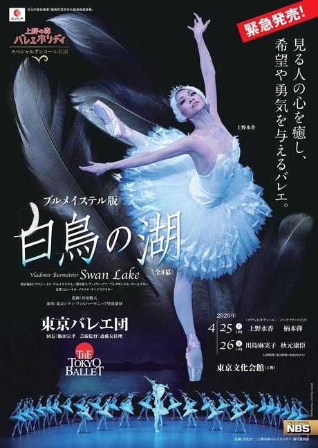 東京バレエ団「白鳥の湖」全4幕 チラシ画像